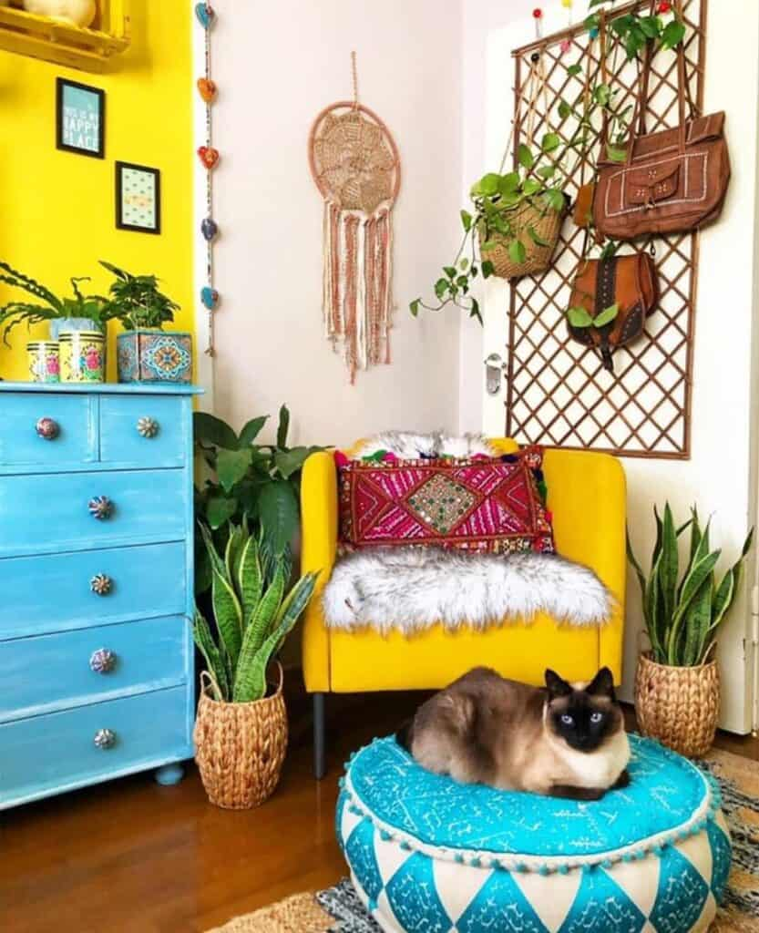 yellow wall and yellow armchair with cat