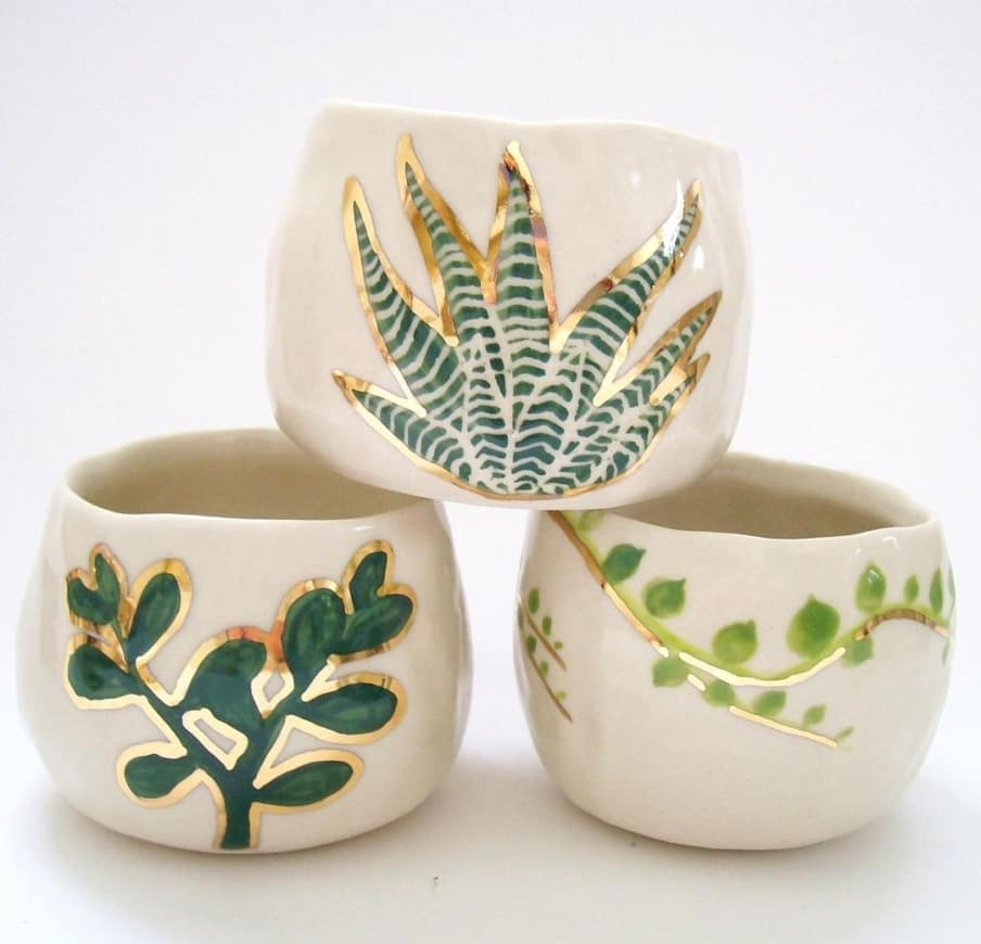 cups with plant life
